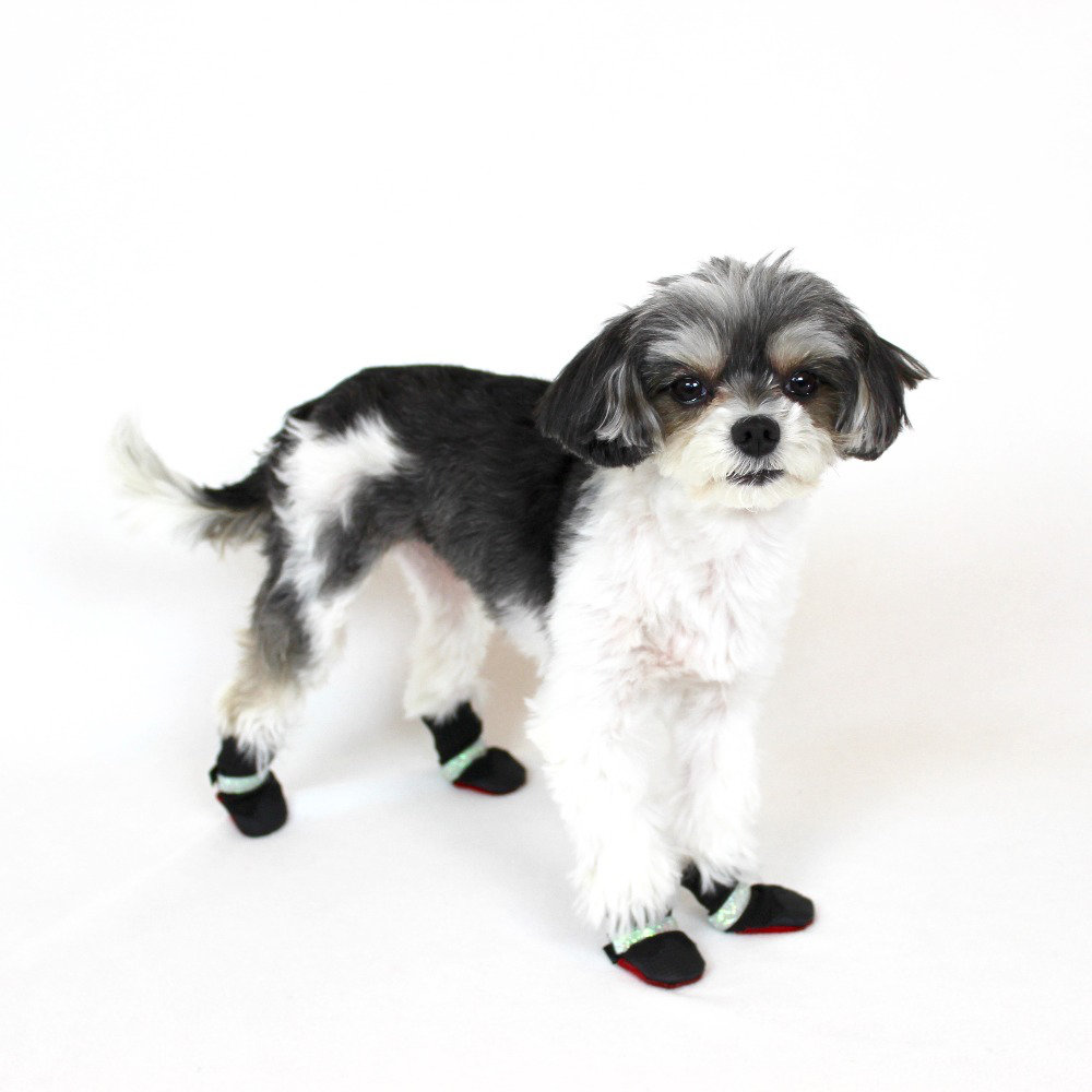 "poochie boots- ($48.00) tinkerbelle: ""this is the only dog boot that fits my little feet + is style concious while keeping me dry in the rain & snow & protecting my delicate paws."
