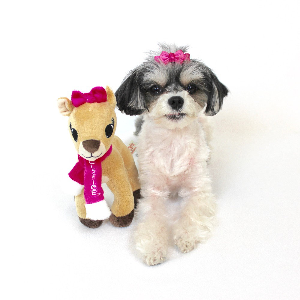 "Clarice plush dog toy - ($7.99)  tinkerbelle: ""my new favorite toy for the holiday season"""
