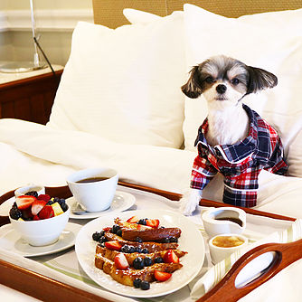 - Not only is there a room service menu for humans, but there is also a pet room service menu. My favorite was the Chicken and Rice!