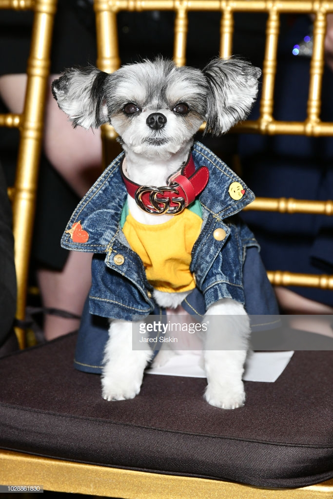 Tinkerbelle front row at Sherri Hill NYFW SS19