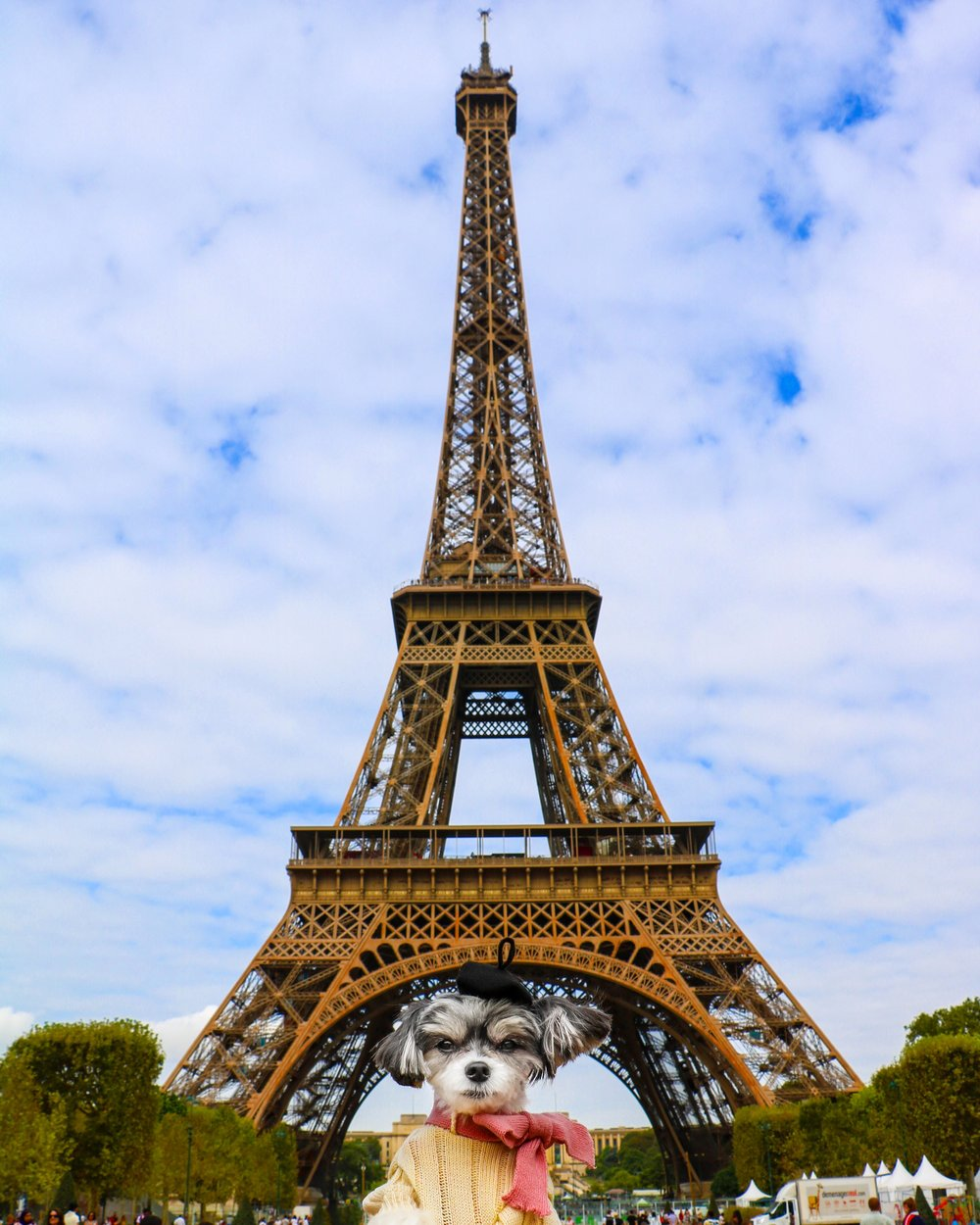 Tinkerbelle and the Eiffel Tower