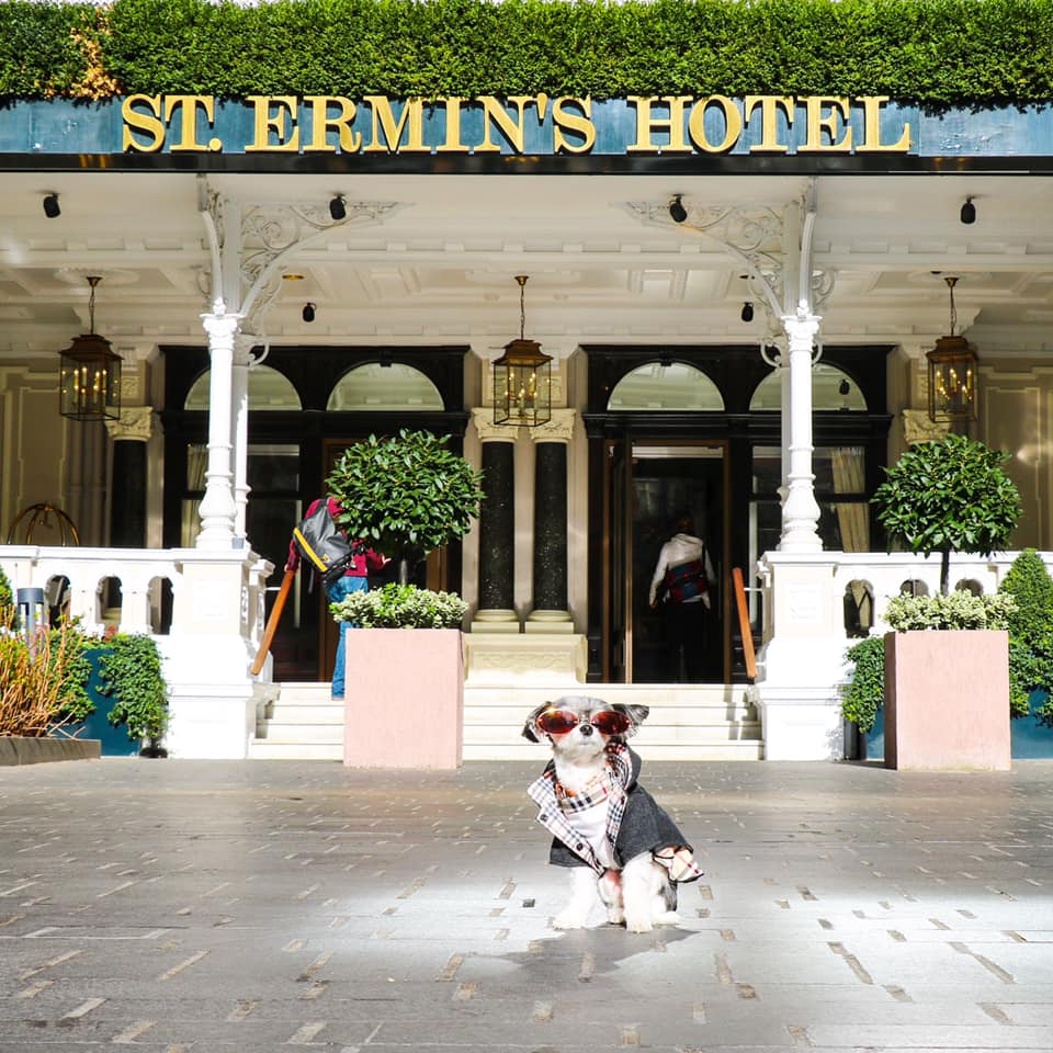Posing in front of St. Ermin's Hotel