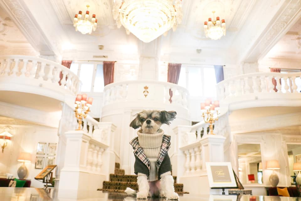 The Lobby of St. Ermin's Hotel
