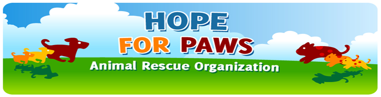hfp_logo.png