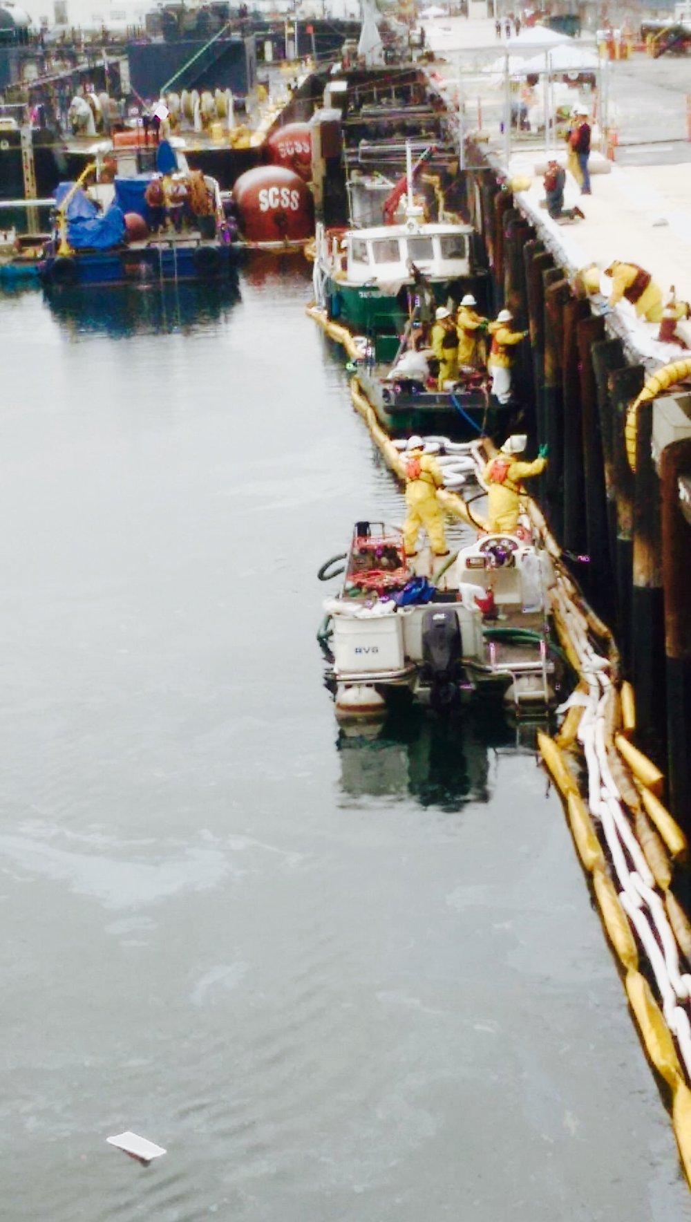 POLA - Pic - Side Dock.jpg