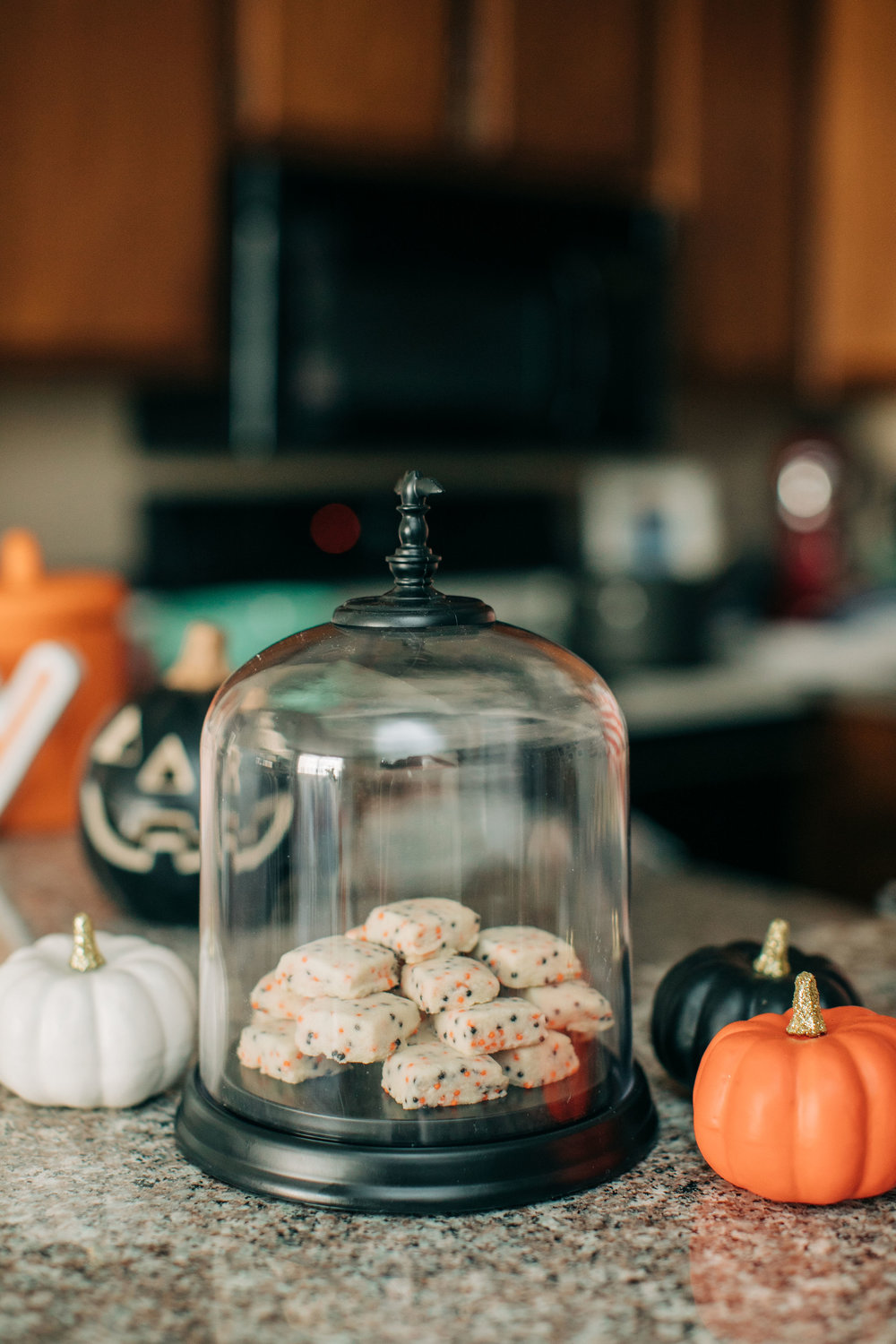 Baby_Boy_Bakery_Halloween_Cookies_Lily_Ro_Photography-2102.jpg