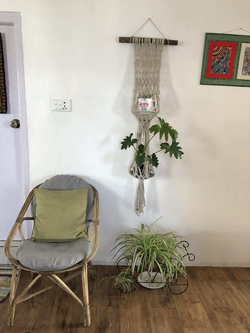 Spider plants on the floor with a Monstera hanging above it accompanied by a rootless air plant in the coffee mug.