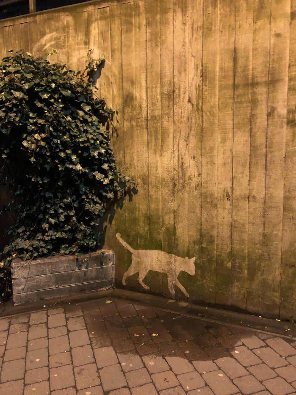 Reverse Graffiti Art