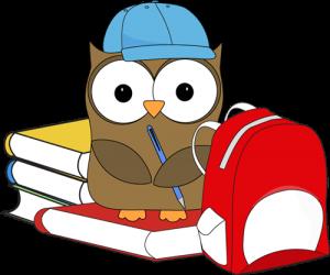 school-owl-300x250.png