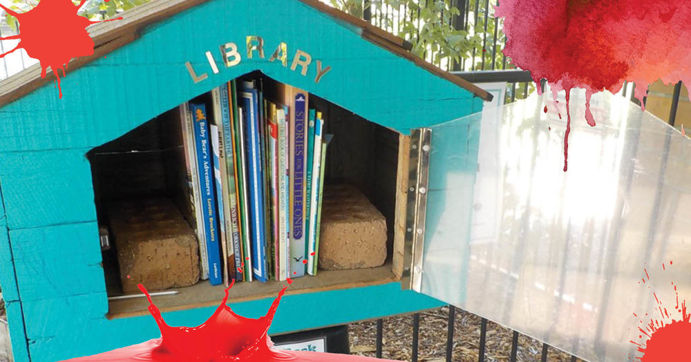 St Nicholas Early Education Singleton opens street library
