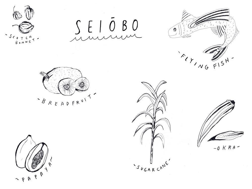 Seiobo illustrations.jpg