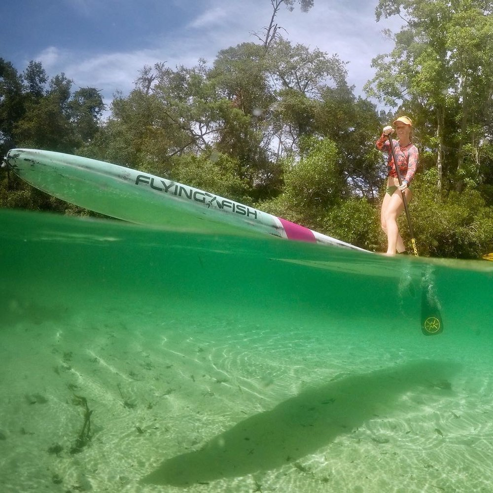 Katherine Pyne - Sarasota, Florida