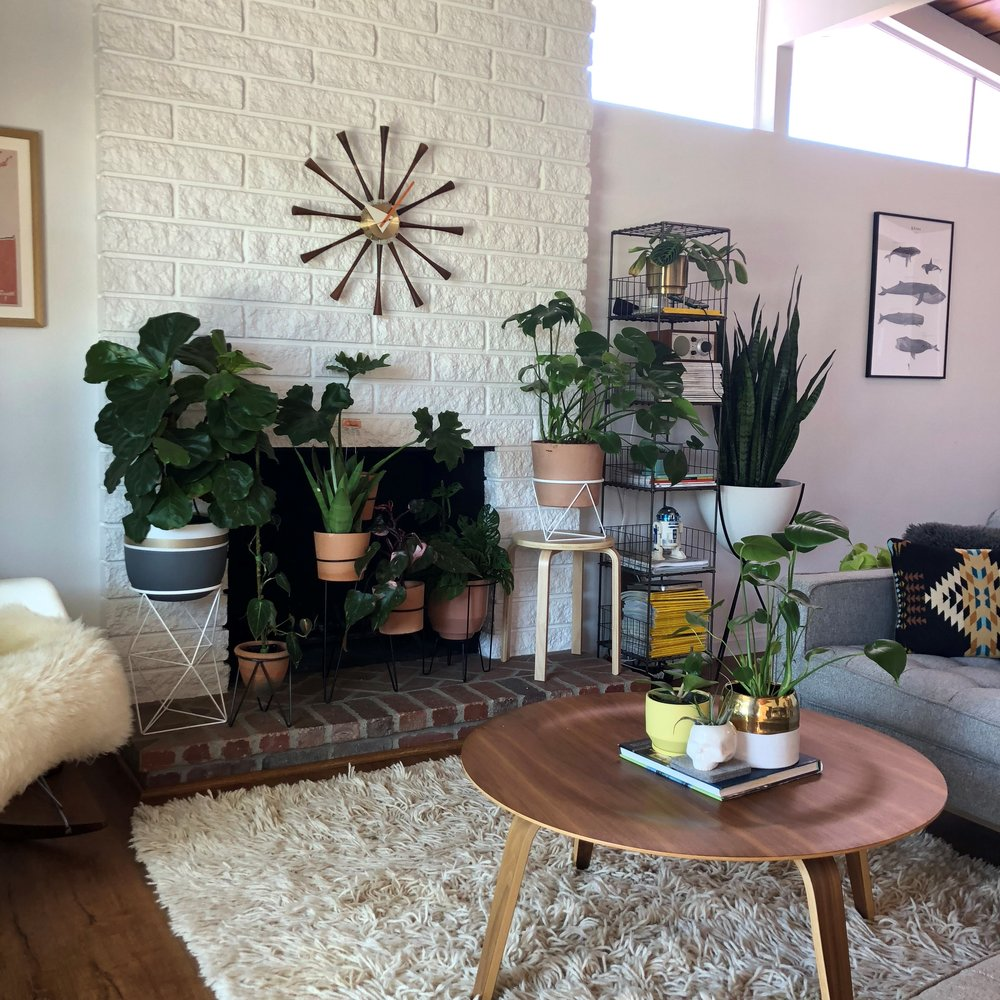 The white stands are from Amigo Modern (amigomodern.com, @amigomodern). An Ikea side table elevates the Monstera. You can also see when compared to the other photo of the same space that I switch things up quite a bit - it's fun to move things around and play with styling!