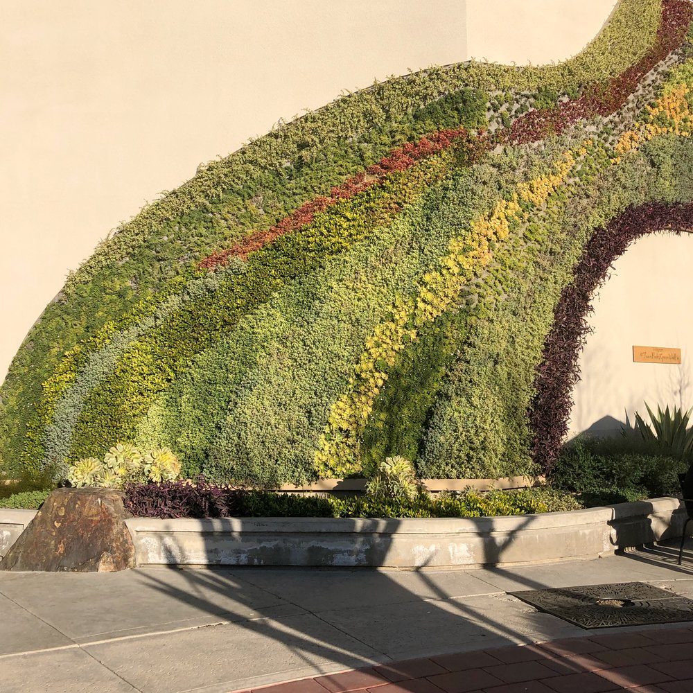 The wall looks like a huge rainbow wave of plants to me! If you visit, look for the Starbuck's, it's right outside.