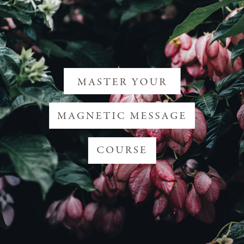 Master Your Magnetic Message HOME-Study Course - In this course I'll walk you through my signature process to help you get crystal clear on your magnetic brand message in order to create a fulfilling and client-attracting business. This is the often-overlooked, but all important foundation for alignment and flow. When you are crystal clear on your core message, your business will magnetize your dream clients without push, force, and struggle - your tribe will find you. You'll feel confident, inspired and moved to share your message with the masses. And you'll know exactly how to communicate your unique value to the world.