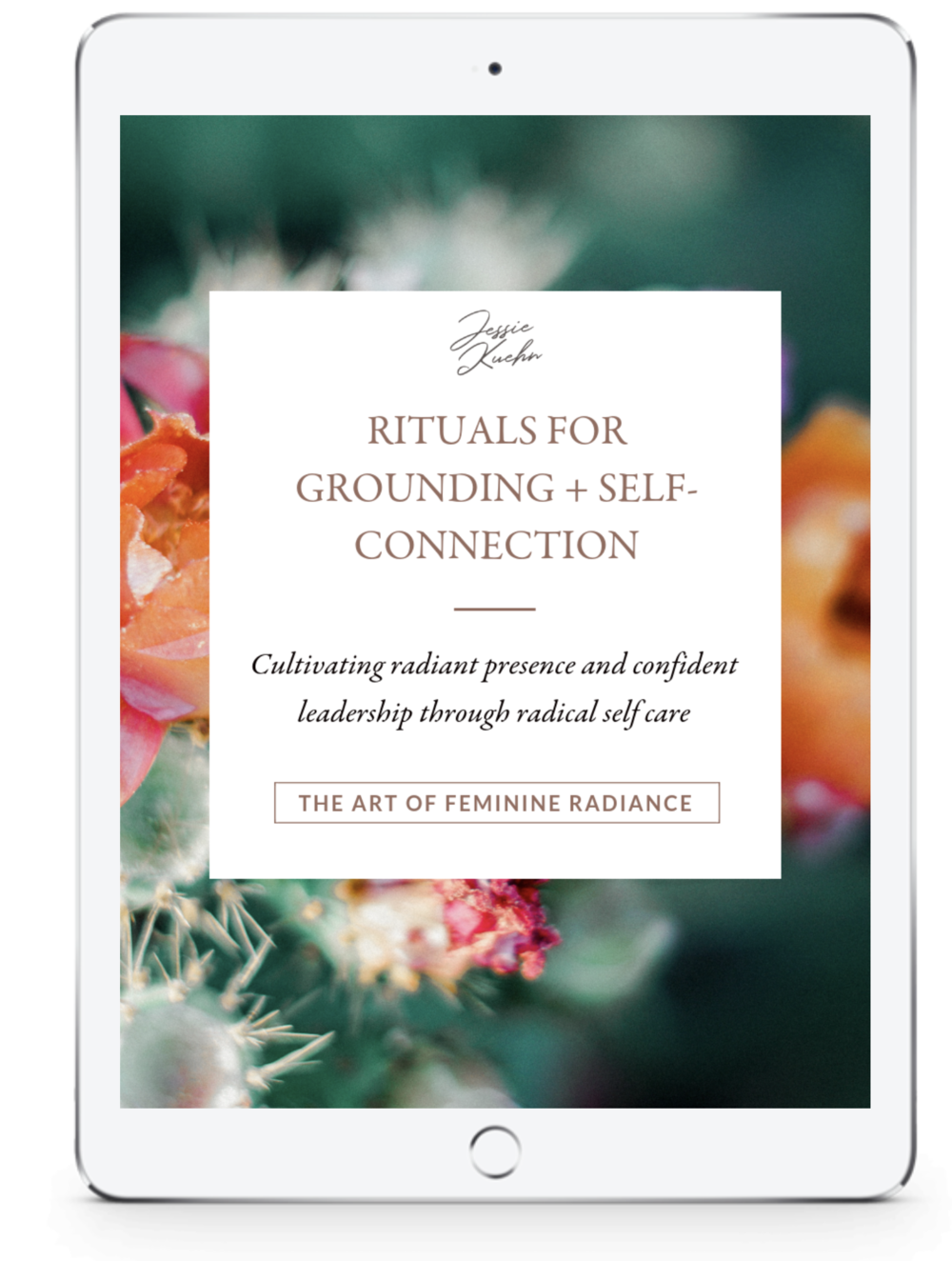 A PLAN OF ACTION FOLLOWING EACH SESSION, PERSONALIZED DAILY PRACTICES, AND CUSTOM-TAILORED RESOURCES - After each session you'll receive a clear, typed action plan rich with targeted, results-oriented action steps designed to create the freedom, confidence, and fulfillment that you yearn for in your life. It is my intention that you have everything you need to create deep, sustainable inner alchemy without information overwhelm and inner chaos. During our time together you'll receive customized resources (reading suggestions, videos, audios & PDF's) curated around what is relevant to your unique transformational journey.