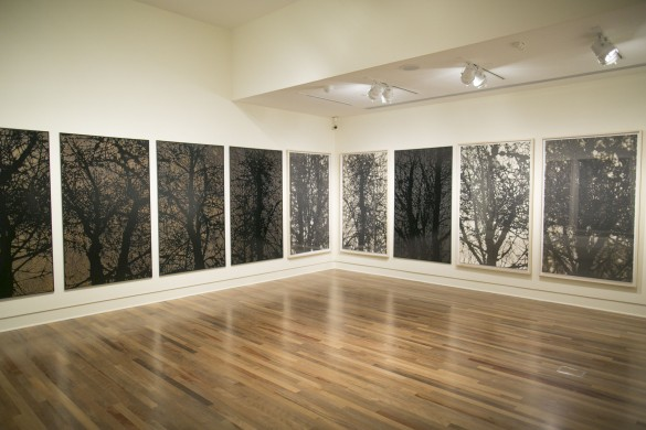 Installation view of woodblocks and prints from Cohan's  Samish  series