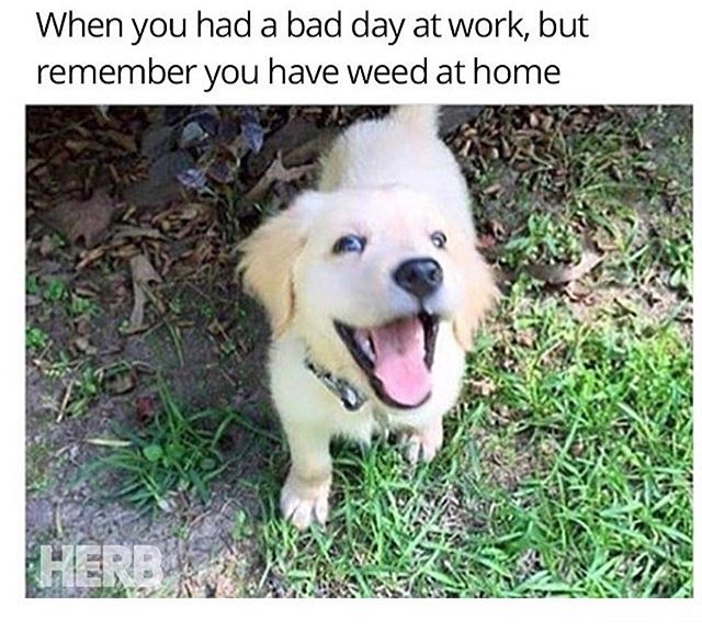 You can feel like this every day this week with the deal we got going on today!! 10g deals ALL DAY🤑🤑🤑