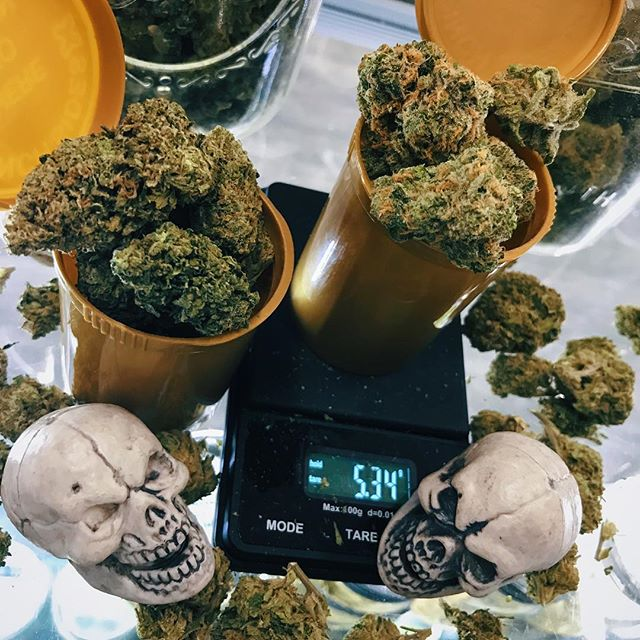 💧10 GRAM TUESDAY💧 Sativa? Indica? Hybrid? One of each? DON'T MIND IF WE DO 🌿🌿🌿 #weedstagram420 #cannabiscommunity #weedporn #weed #thedrip
