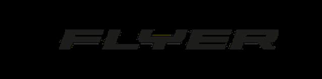 Flyer-logo-2.png