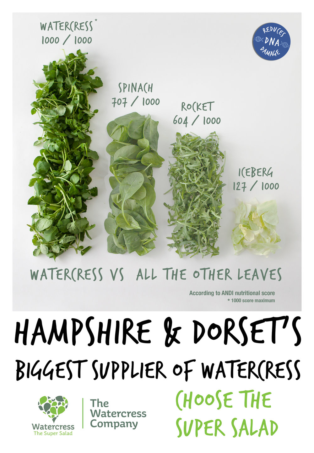 The Watercress Company's favourite infographic