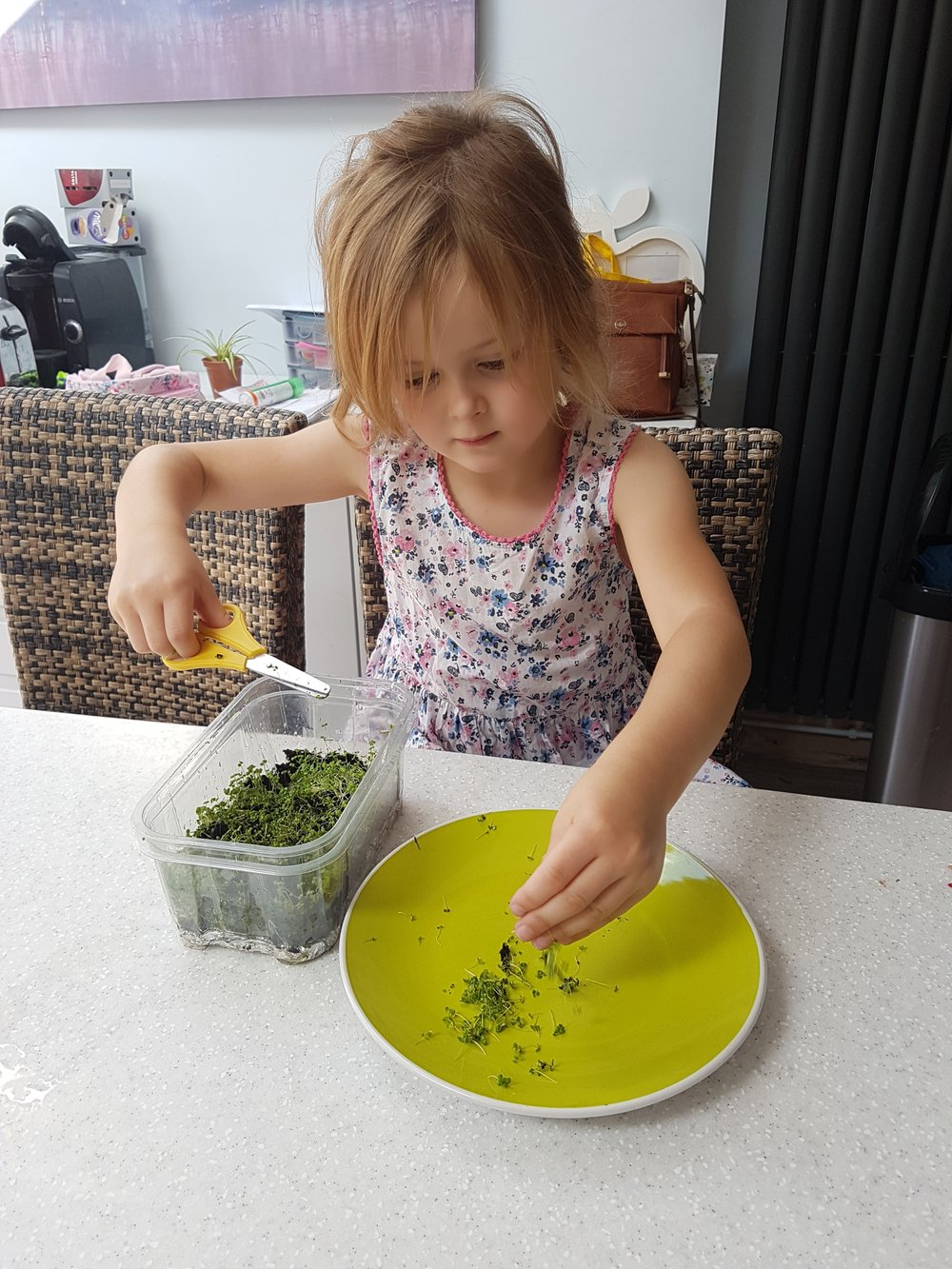 Sophie Earl harvested hers as baby watercress