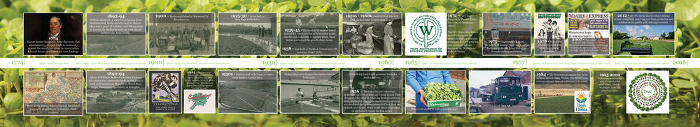 Dorset Show Timeline_small_.jpg