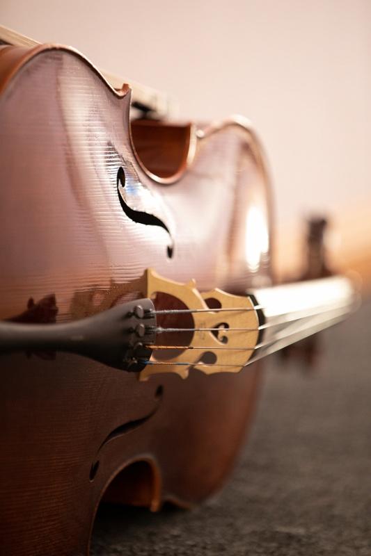 Cello liggandes 2.jpg
