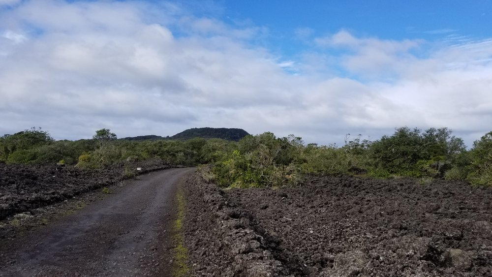 Looking east along the main island road to the summit. Note the volcanic rubble in the lower right-hand corner
