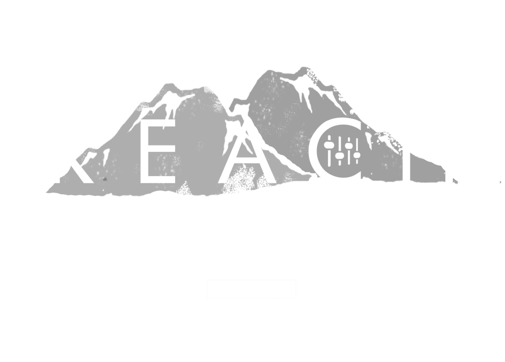 REACH Audio