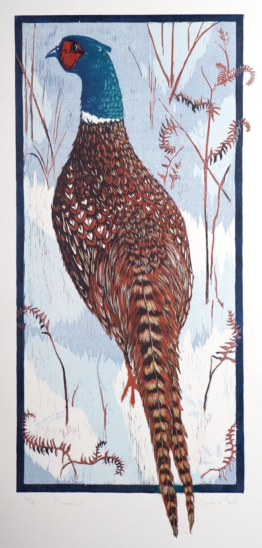 'Pheasant'