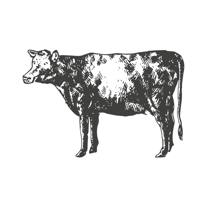 cow_black.png