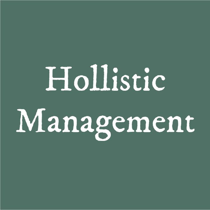 HollisticManagement.png