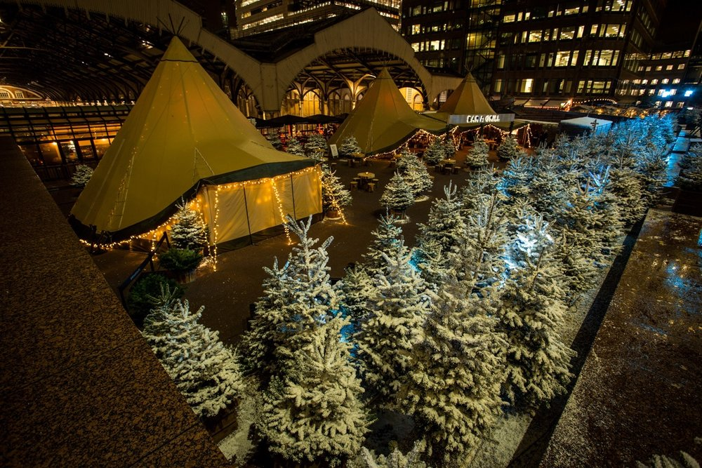 Broadgate Winter Forest  (154).jpeg