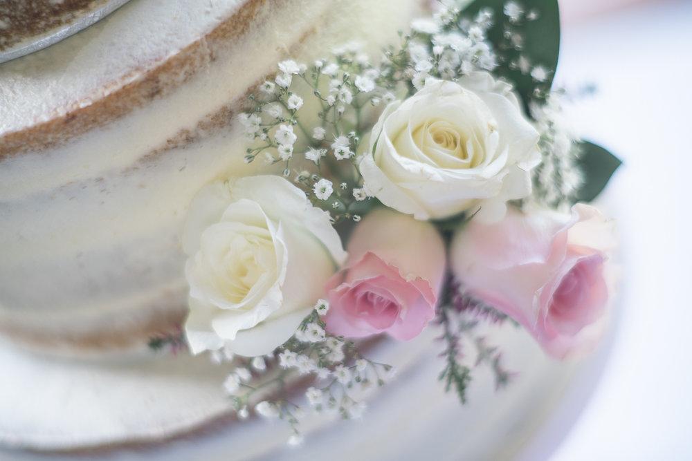 St Audries Park Wedding Photography-19.jpg