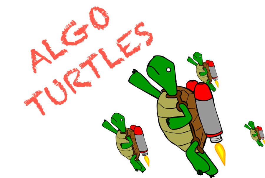 ALGO TURTLES CLASS OF 2018    ENTER