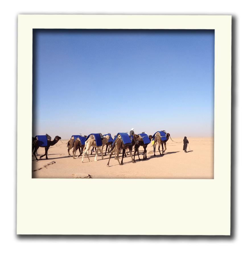 polaroid_marokko04.jpg