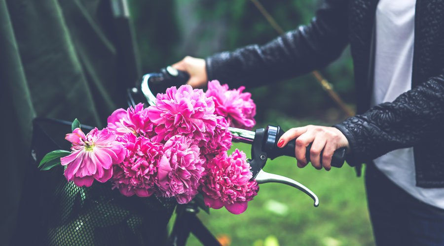 flowers on bike.jpg