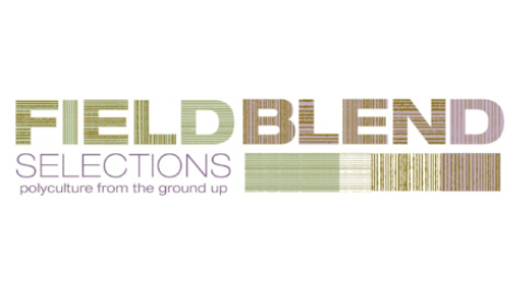 sz field blend.jpg