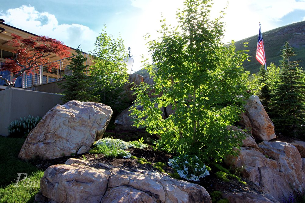 Salt Lake City Utah 84103 Home (5).jpg