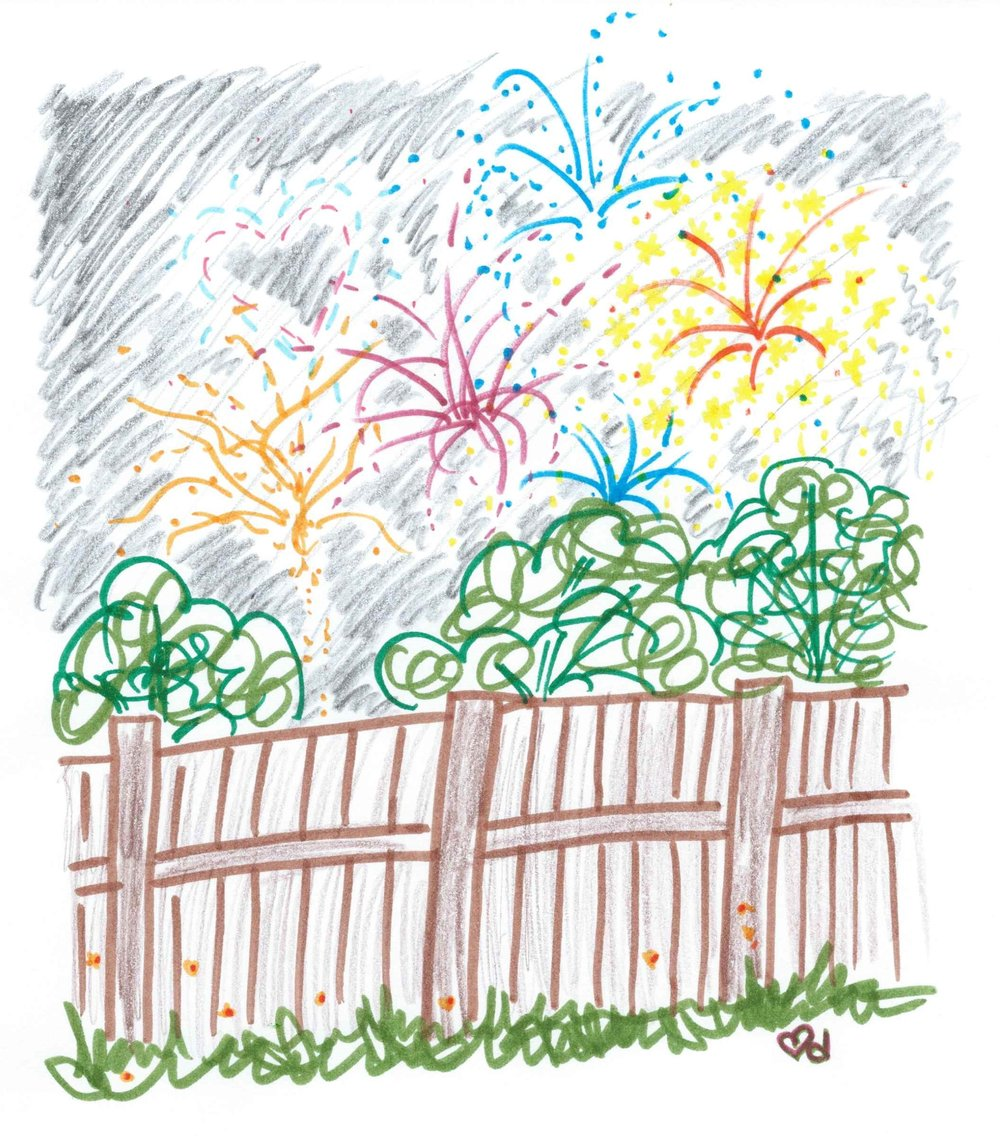 fireworks-and-fireflies.jpg