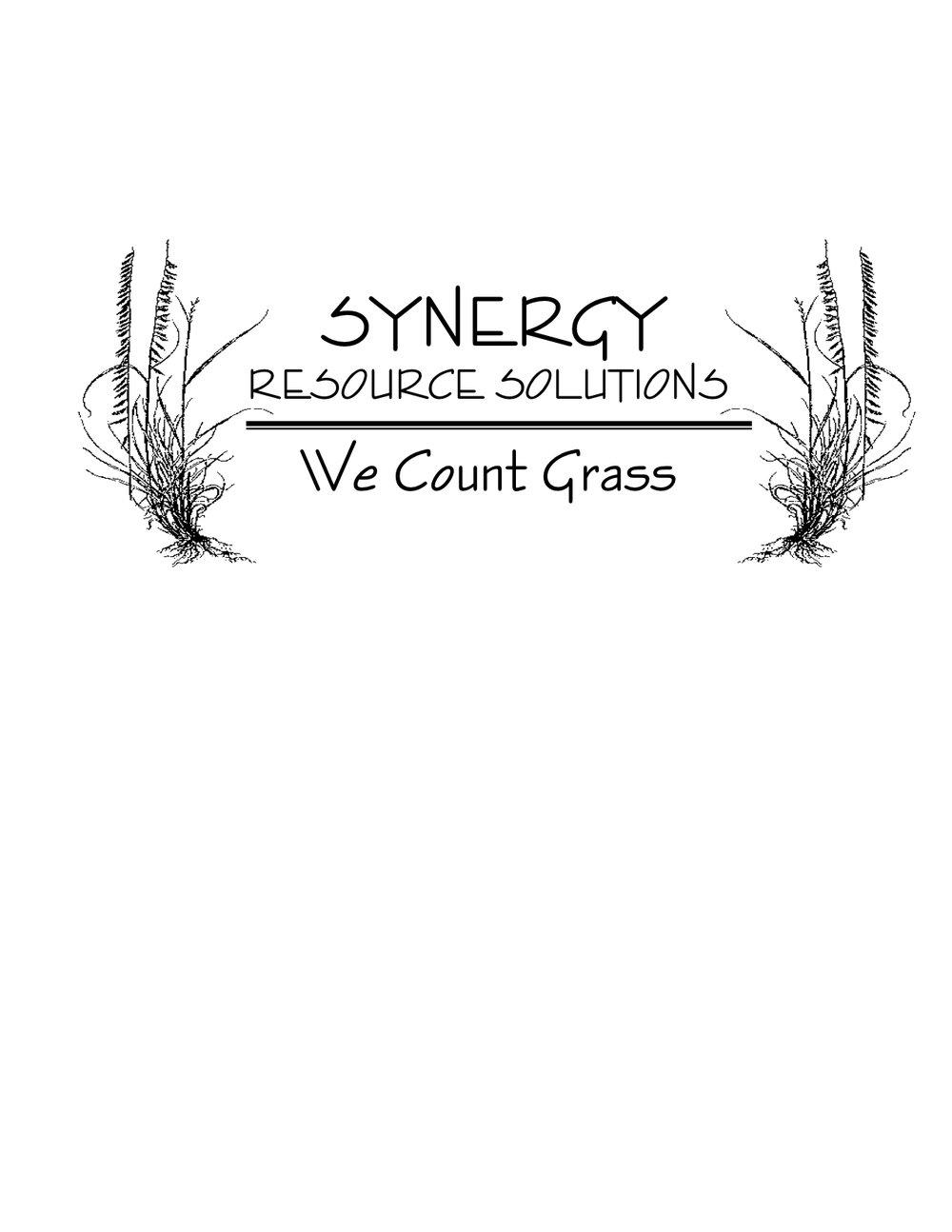 synergy logo no oval.jpg