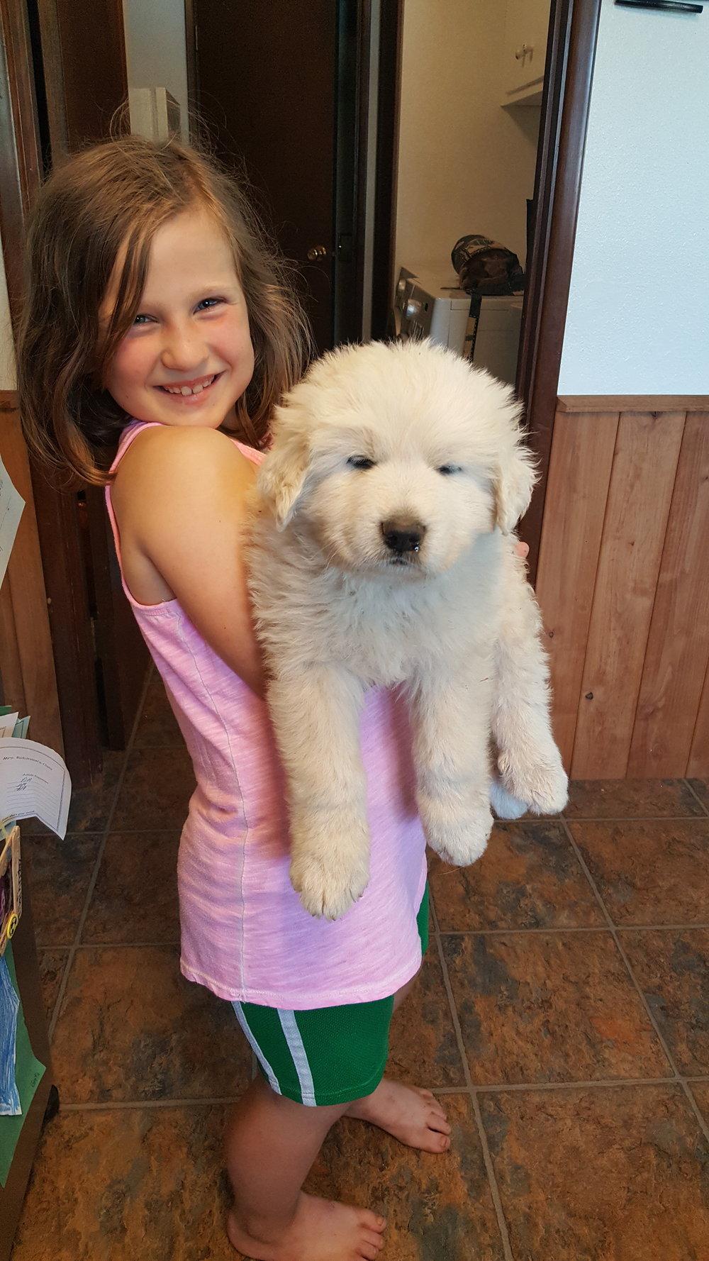 Puppy and Greta 5.13.16.jpg