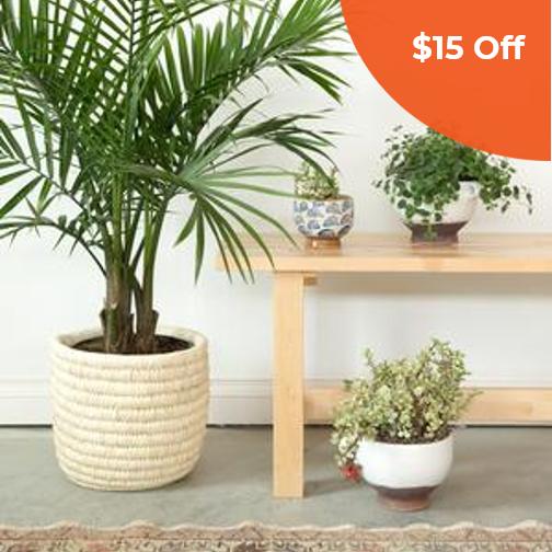 Maha Palm Basket   Baladi Home $61.00   Save $15 off orders over $100  with promo code: DONEGOOD15