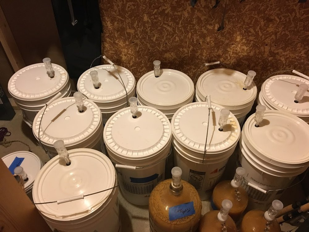 60 gallons of cider fermenting
