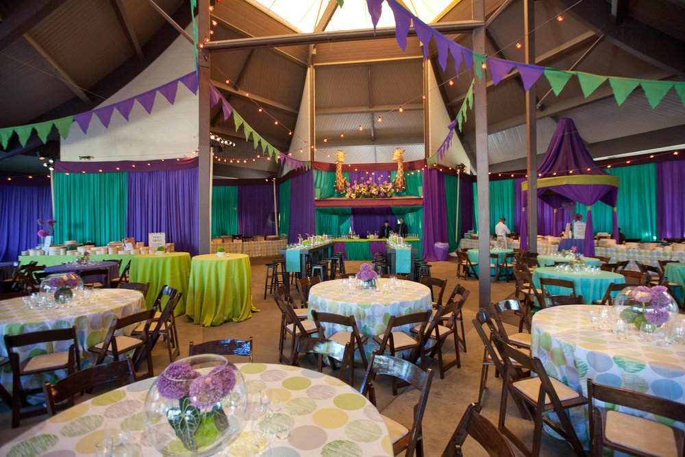Tree Tops Zoo Party -