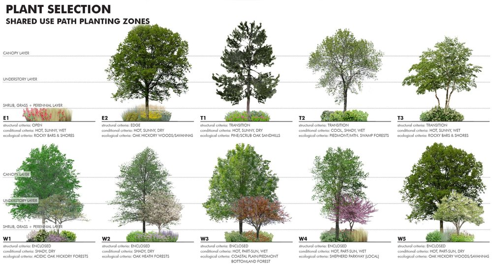 12-Access Road Ecotones-Plant Selection.jpg