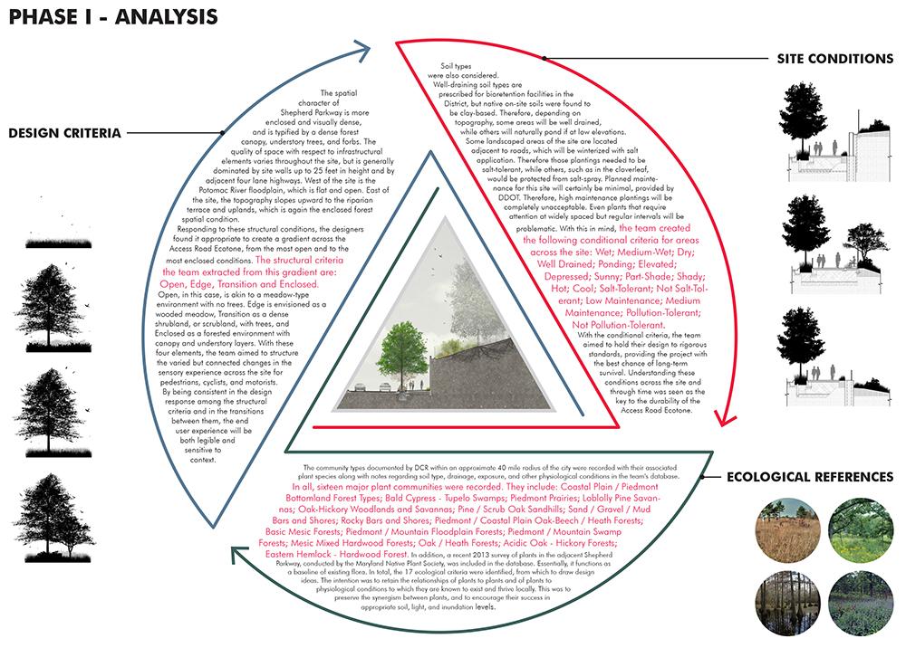 07-Access Road Ecotones-Site Analysis.jpg