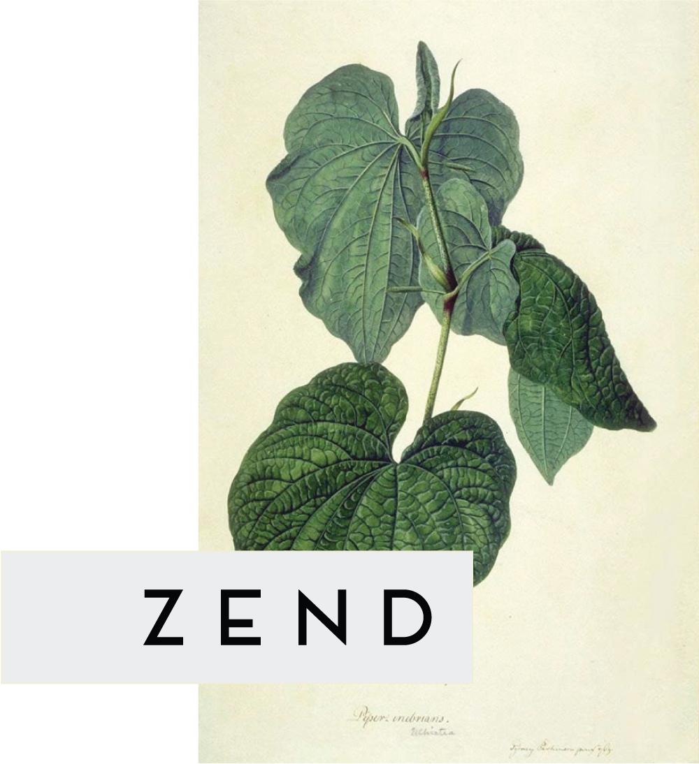 zend-info-graphic-3.jpg