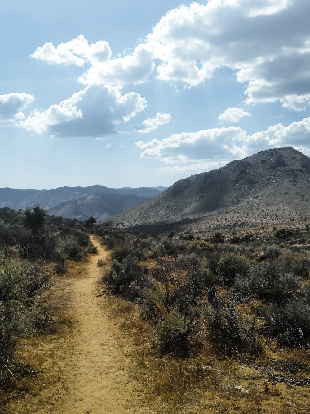 But before making it to the Sierra, the hottest and driest section